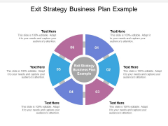 Exit Strategy Business Plan Example Ppt PowerPoint Presentation Professional Samples Cpb