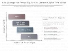 Exit Strategy For Private Equity And Venture Capital Ppt Slides