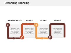 Expanding Branding Ppt Powerpoint Presentation Portfolio Shapes Cpb