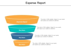 Expense Report Ppt PowerPoint Presentation Diagram Templates Cpb