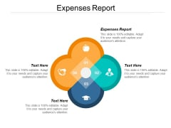Expenses Report Ppt PowerPoint Presentation Gallery Microsoft