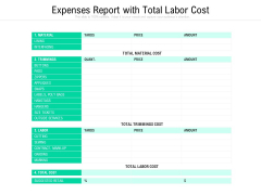 Expenses Report With Total Labor Cost Ppt PowerPoint Presentation Professional Graphics Tutorials PDF
