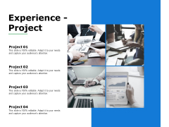 Experience Project Marketing Ppt Powerpoint Presentation Gallery Graphic Images