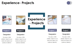 Experience Projects Ppt PowerPoint Presentation File Shapes