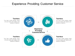 Experience Providing Customer Service Ppt PowerPoint Presentation Summary Picture Cpb