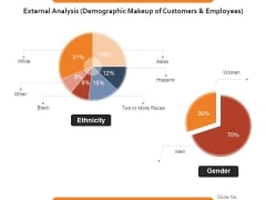 External Analysis Demographic Makeup Of Customers And Employees Ppt PowerPoint Presentation Slides Example