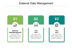 External Data Management Ppt PowerPoint Presentation Model Information Cpb Pdf