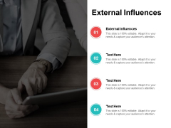 External Influences Ppt PowerPoint Presentation Show Vector Cpb