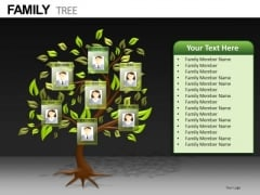 Editable Photos Family Tree PowerPoint Templates