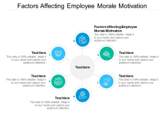 Factors Affecting Employee Morale Motivation Ppt PowerPoint Presentation Summary Example