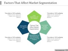 Factors That Affect Market Segmentation Ppt PowerPoint Presentation Good