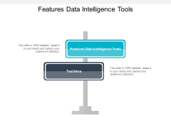 Features Data Intelligence Tools Ppt PowerPoint Presentation Slides Backgrounds Cpb