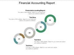 Financial Accounting Report Ppt PowerPoint Presentation Layouts Outfit Cpb