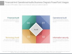 Financial And Operational Audits Business Diagram Powerpoint Images