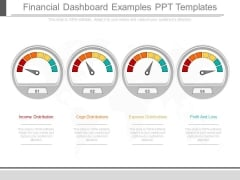 Financial Dashboard Examples Ppt Templates