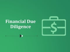 Financial Due Diligence Ppt PowerPoint Presentation Infographics Graphics