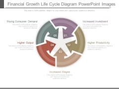 Financial Growth Life Cycle Diagram Powerpoint Images