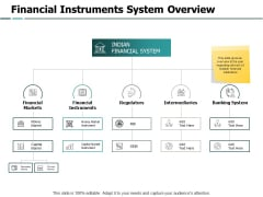 Financial Instruments System Overview Financial Instruments Ppt PowerPoint Presentation Layouts Influencers