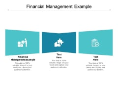 Financial Management Example Ppt PowerPoint Presentation Gallery Skills Cpb
