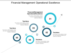 Financial Management Operational Excellence Ppt PowerPoint Presentation Inspiration Example Cpb