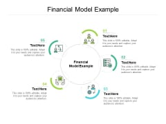 Financial Model Example Ppt PowerPoint Presentation Layouts Infographic Template Cpb
