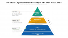 Financial Organizational Hierarchy Chart With Risk Levels Ppt PowerPoint Presentation Gallery Graphics Template PDF