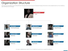 Financial PAR Organization Structure Ppt Icon Microsoft PDF