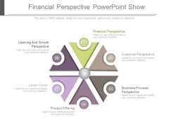 Financial Perspective Powerpoint Show