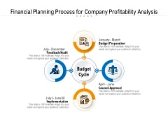 Financial Planning Process For Company Profitability Analysis Ppt PowerPoint Presentation File Show PDF