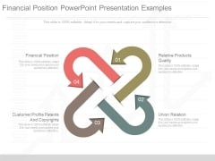 Financial Position Powerpoint Presentation Examples