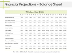 Financial Projections Balance Sheet Ppt PowerPoint Presentation Inspiration