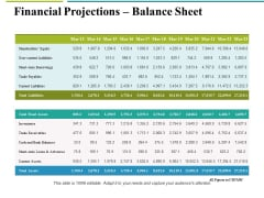 Financial Projections Balance Sheet Ppt PowerPoint Presentation Layouts Guide