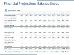 Financial Projections Balance Sheet Ppt PowerPoint Presentation Portfolio Tips