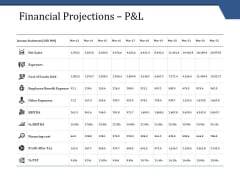 Financial Projections P And L Template 1 Ppt PowerPoint Presentation Portfolio Layouts