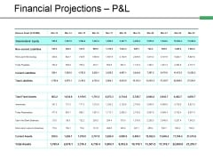 Financial Projections P And L Template 2 Ppt PowerPoint Presentation Portfolio Sample