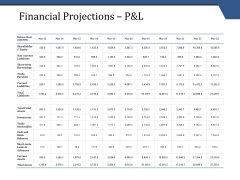 Financial Projections P And L Template 2 Ppt PowerPoint Presentation Show Example