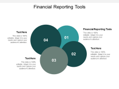 Financial Reporting Tools Ppt Powerpoint Presentation Inspiration Show Cpb