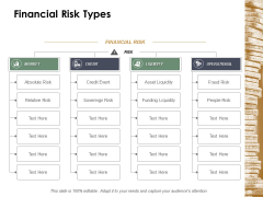 Financial Risk Types Ppt Powerpoint Presentation Inspiration Graphics Example