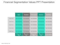 Financial Segmentation Values Ppt Presentation