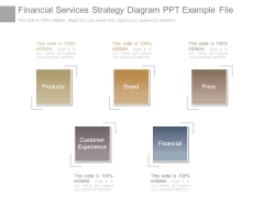 Financial Services Strategy Diagram Ppt Example File