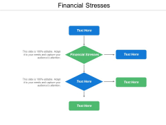 Financial Stresses Ppt Powerpoint Presentation Inspiration Maker Cpb