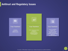 Firm Capability Assessment Antitrust And Regulatory Issues Ppt Outline Example PDF