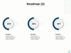 Fiscal Management Roadmap 2015 To 2017 Ppt Gallery Slide PDF