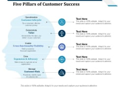 Five Pillars Of Customer Success Ppt PowerPoint Presentation Infographic Template Example