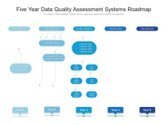 Five Year Data Quality Assessment Systems Roadmap Sample