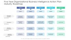 Five Year Organizational Business Intelligence Action Plan Maturity Roadmap Ideas