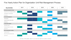 Five Yearly Action Plan For Organization Unit Risk Management Process Download
