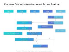 Five Years Data Validation Advancement Process Roadmap Portrait