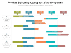 Five Years Engineering Roadmap For Software Programmer Brochure