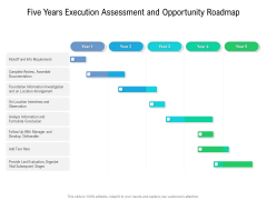 Five Years Execution Assessment And Opportunity Roadmap Professional